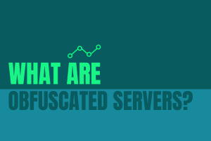 What are Obfuscated Servers